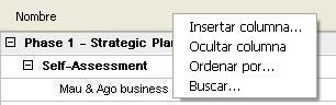 viewer for microsoft project - column context menu